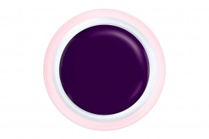 Art Gel Purple