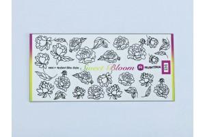 Sweet Bloom 11